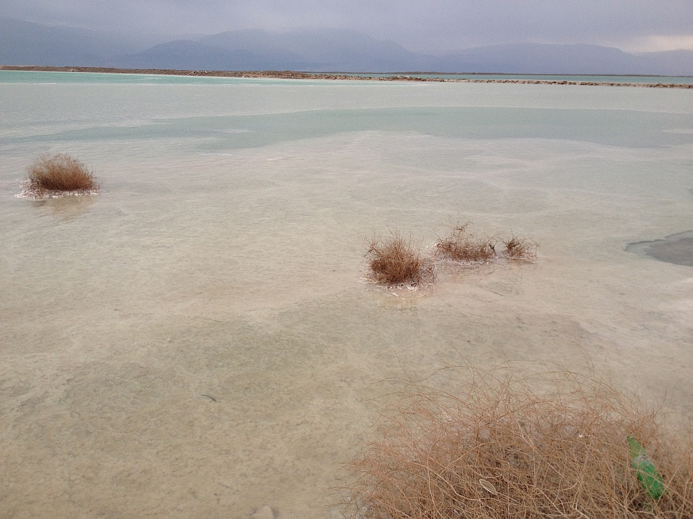A Holt-tenger élővilágának sivársága már-már lenyűgöző - és elképesztő, hogy 400 méterrel vagyunk a tengerszint alatt