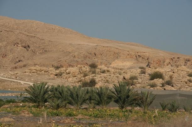 Kopár táj a Holt-tenger partján